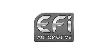 groupe-marmillon_logo_efi-automotive_noir-et-blanc